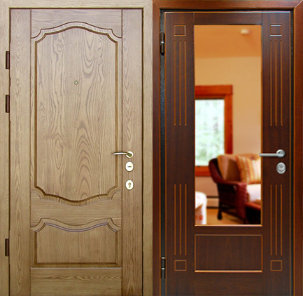 двери наружные из металлической филенки